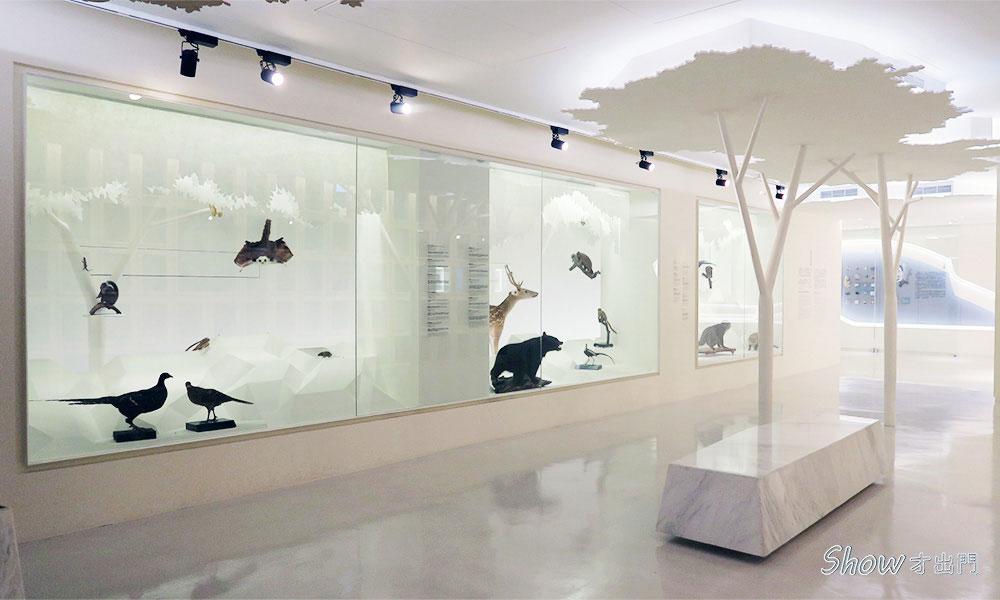 臺灣博物館-最近展覽