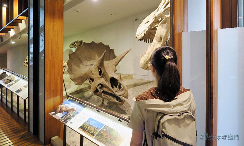 展覽介紹-恐龍主題展-台博館-古生物館
