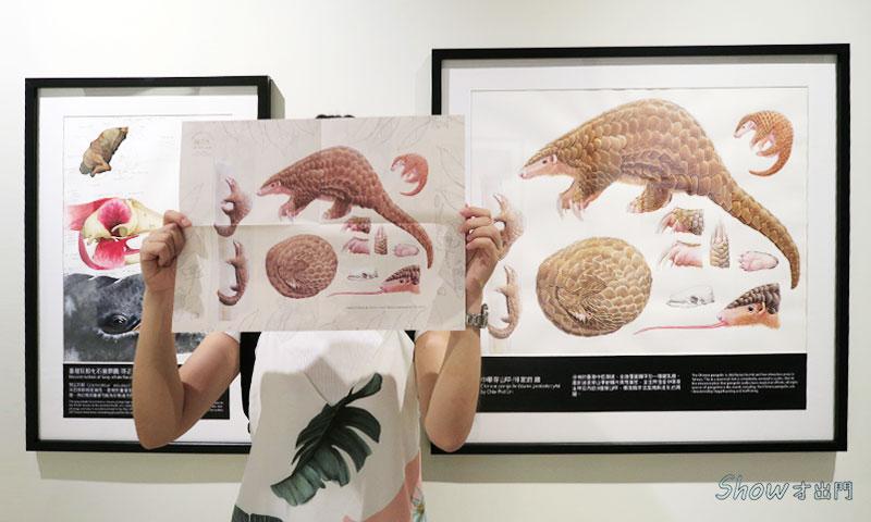 展覽介紹-台博館-繪自然