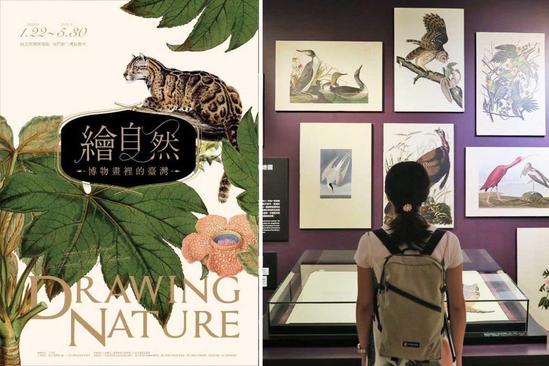 繪自然-台博館展覽介紹