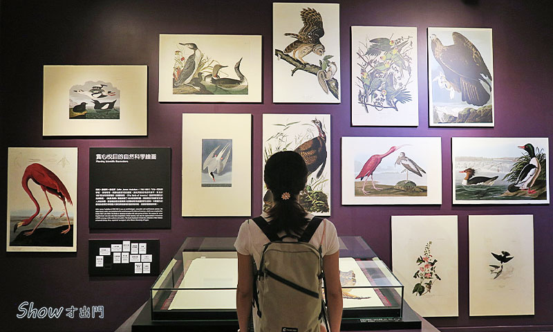 繪自然-展覽介紹-台博館-展覽心得