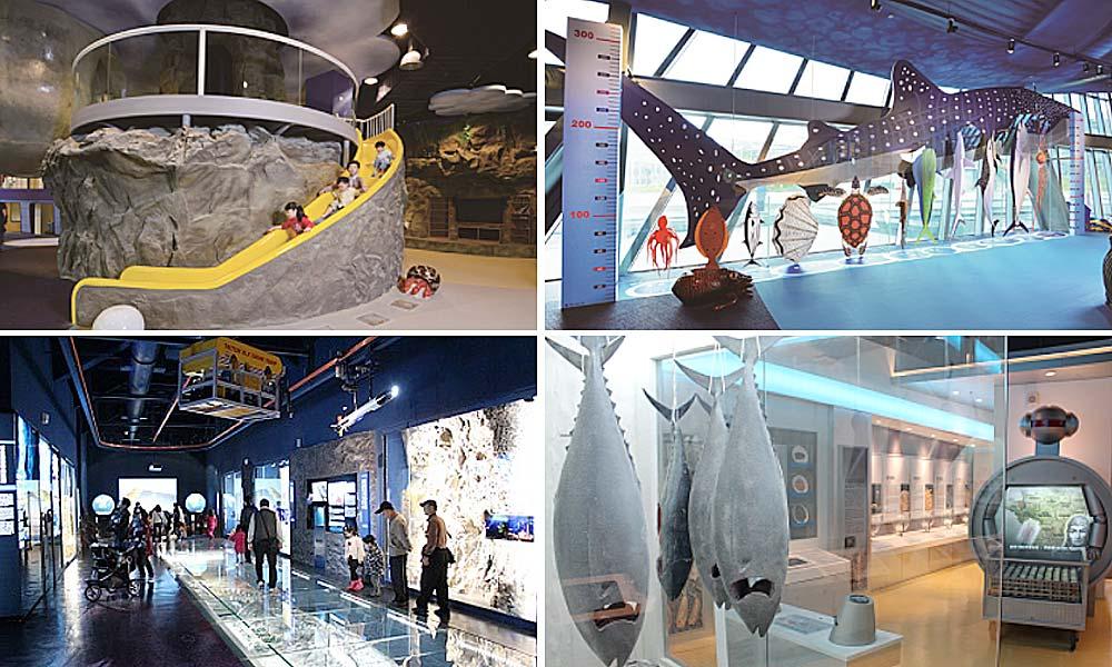 台北博物館-海洋科技博物館