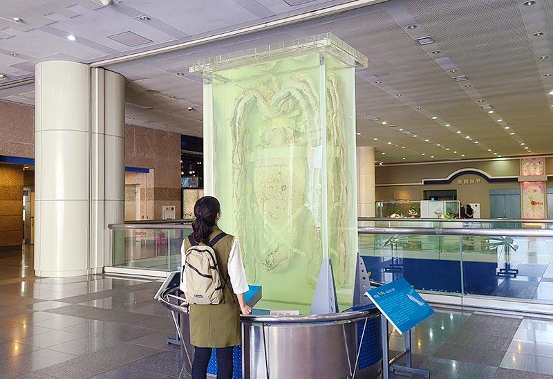 台中博物館-自然科學博物館